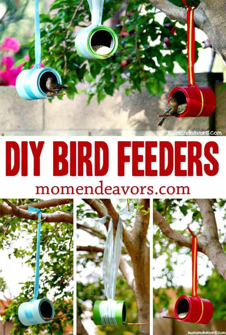 Comederos para pájaros de bricolaje: una manualidad de verano simple