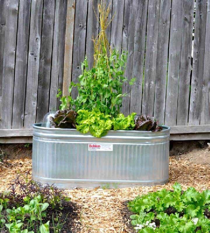 Jardinera de abrevadero reutilizada