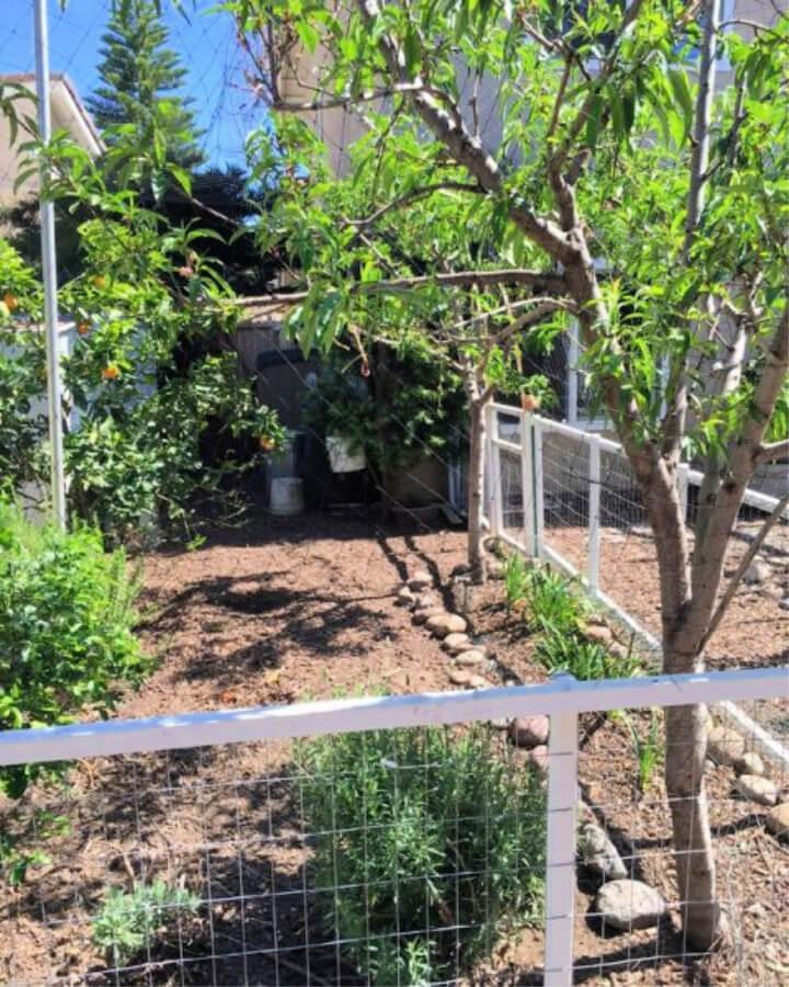 Construya un gallinero sin cavar agujeros en los postes