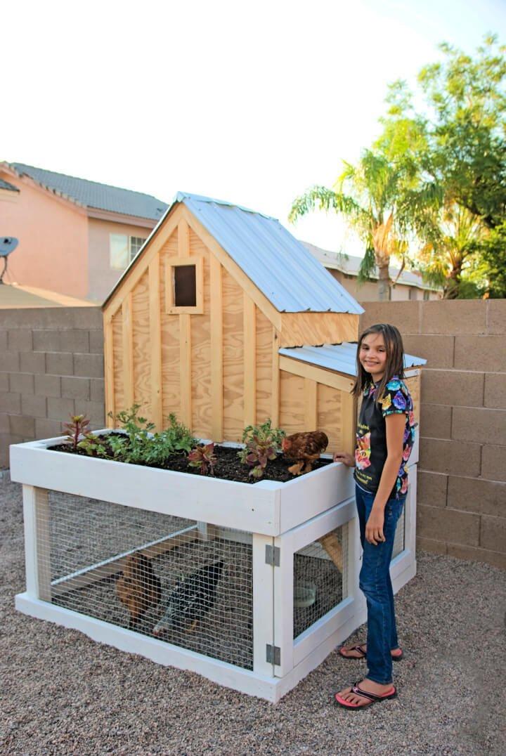 Casa de pollo DIY con Run