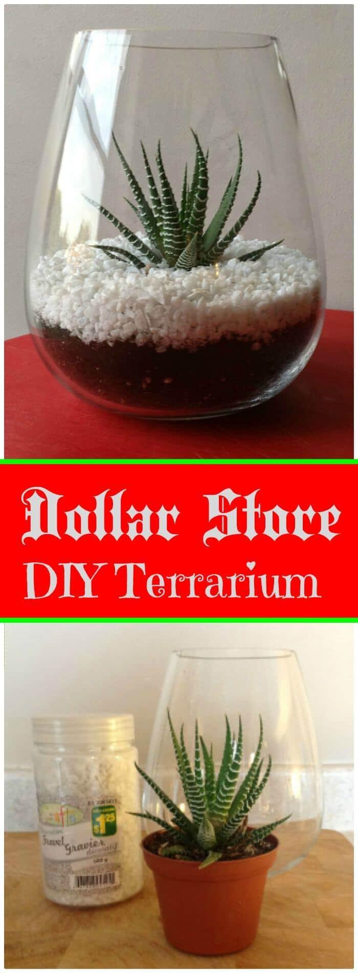 Terrario DIY Dollar Store - Tutorial gratuito