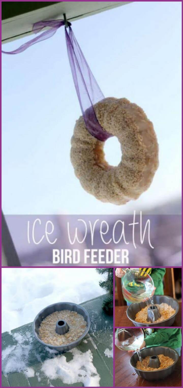 comedero especial para pájaros con corona de hielo