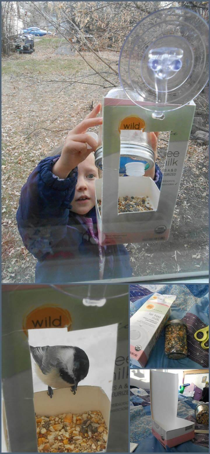 comedero rápido para pájaros con ventana hecho para niños