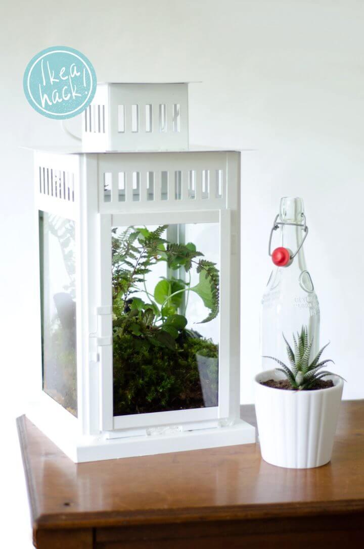 DIY Lantern Terrarium Ikea Hack