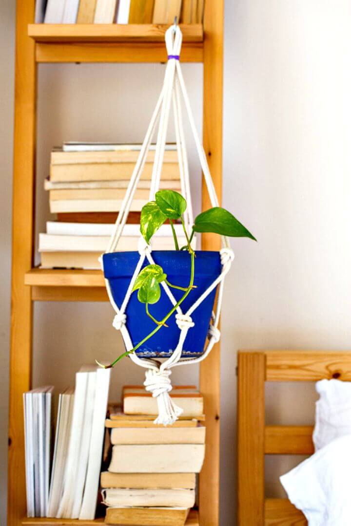 Cómo el colgador de plantas anudado simple de Little Nicki