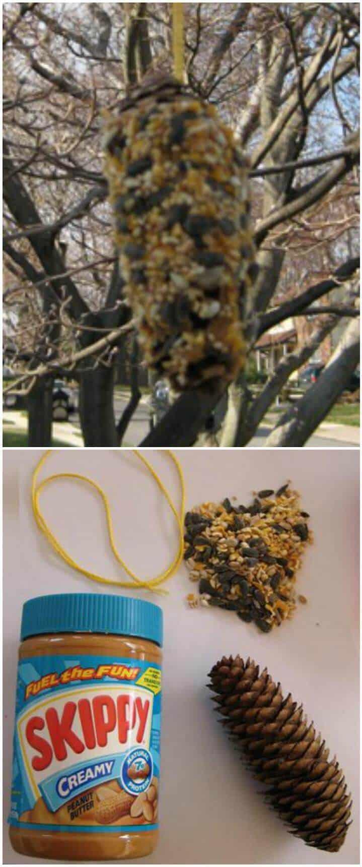 Comedero para pájaros de cono de pino de bricolaje