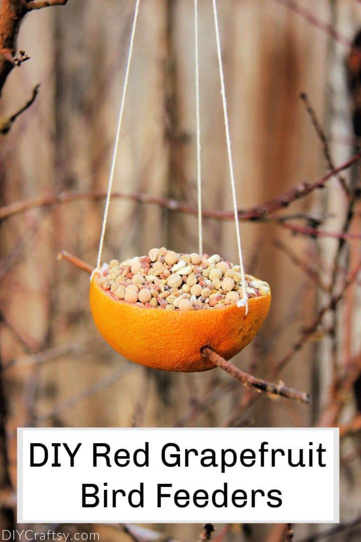 Comederos para pájaros de pomelo rojo de bricolaje