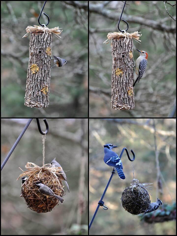 idea inteligente del comedero para pájaros de sebo