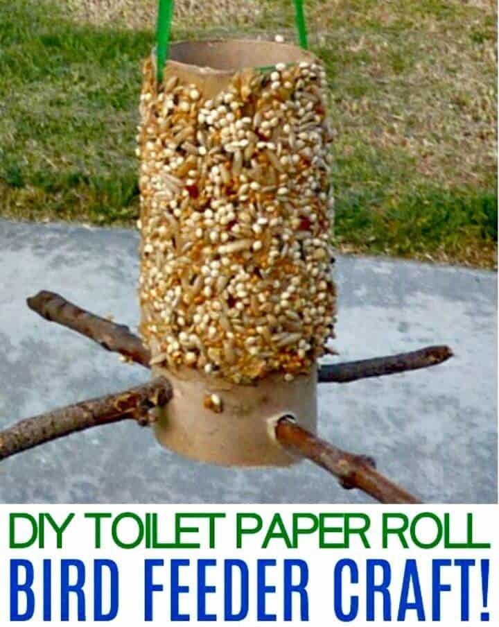 Artesanía simple del alimentador del pájaro del rollo de papel higiénico de DIY