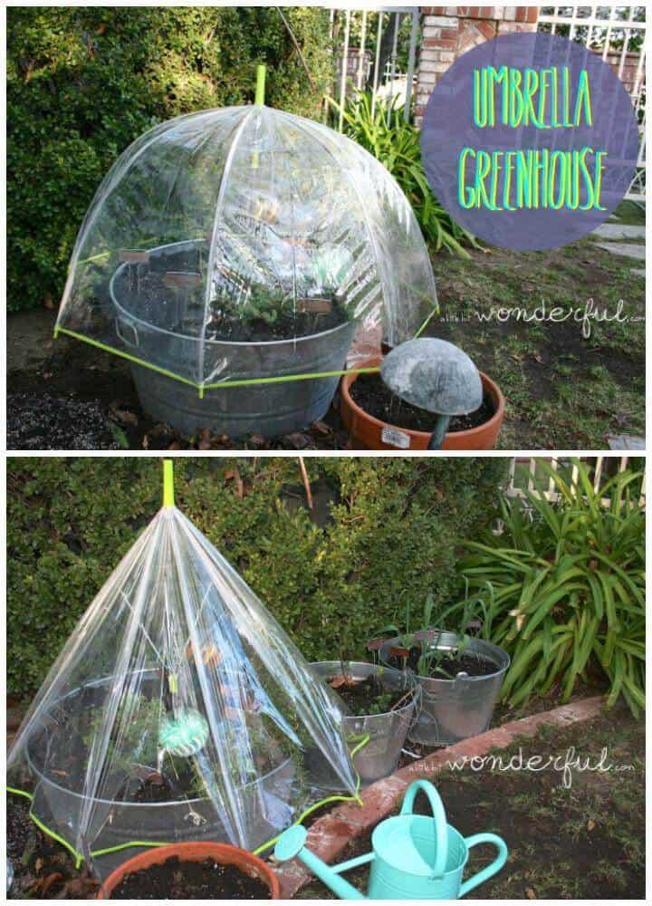 Mini invernadero de paraguas de bricolaje