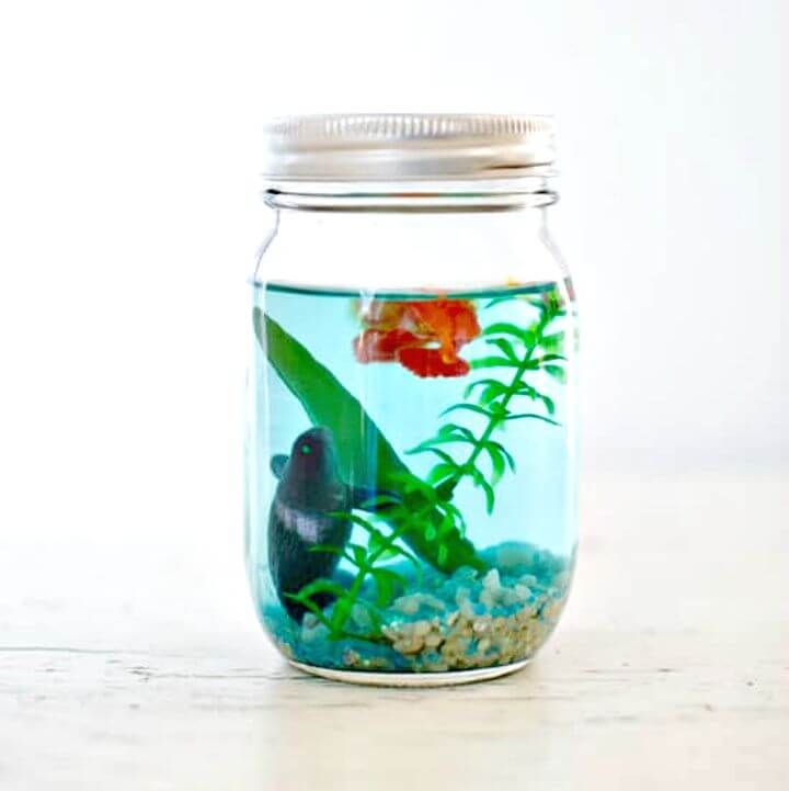 Fácil acuario DIY Mason Jar