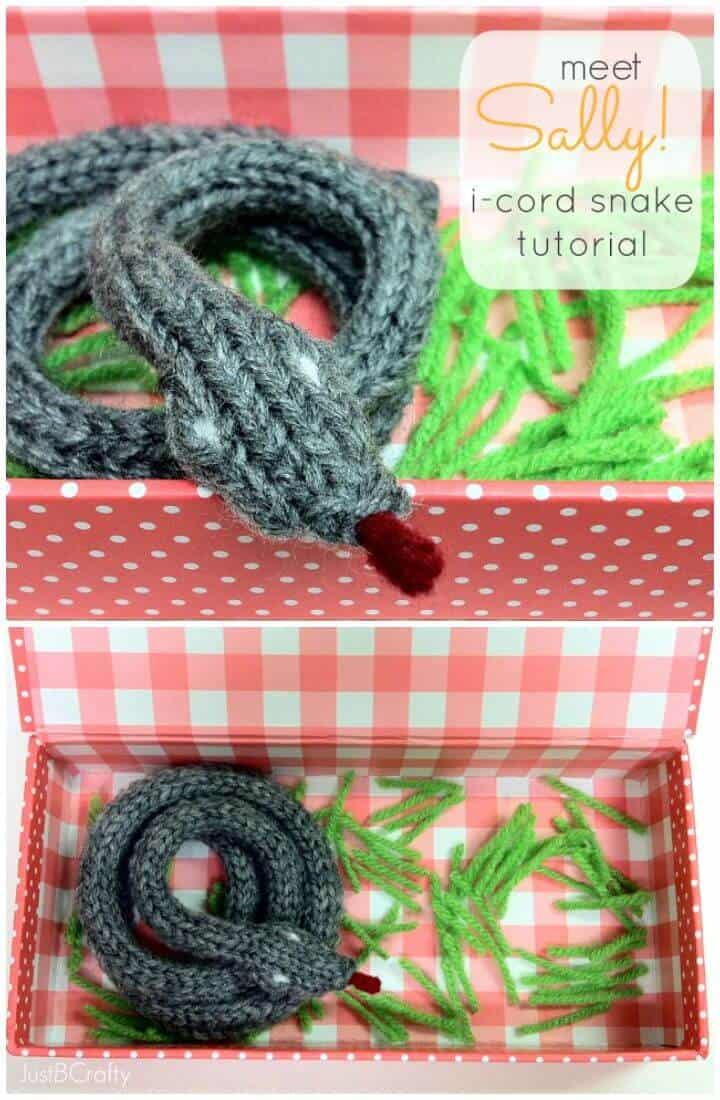 ¡Conoce a Sally gratis de Knit!  Patrón de serpiente I-cord