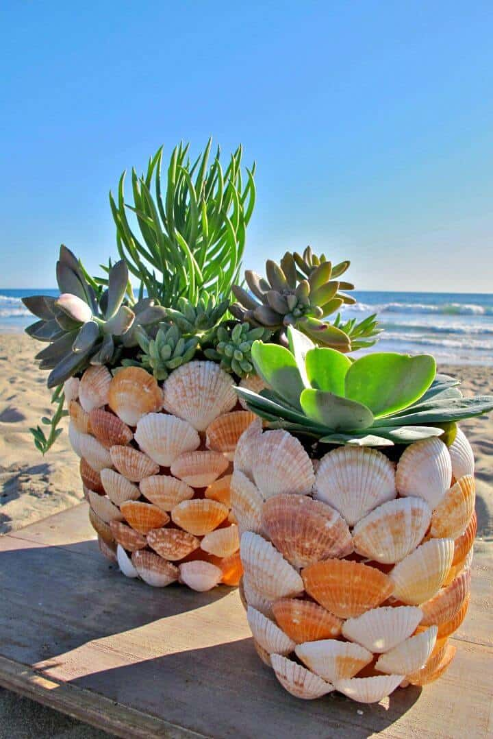Adorable jardinera de conchas playeras de bricolaje