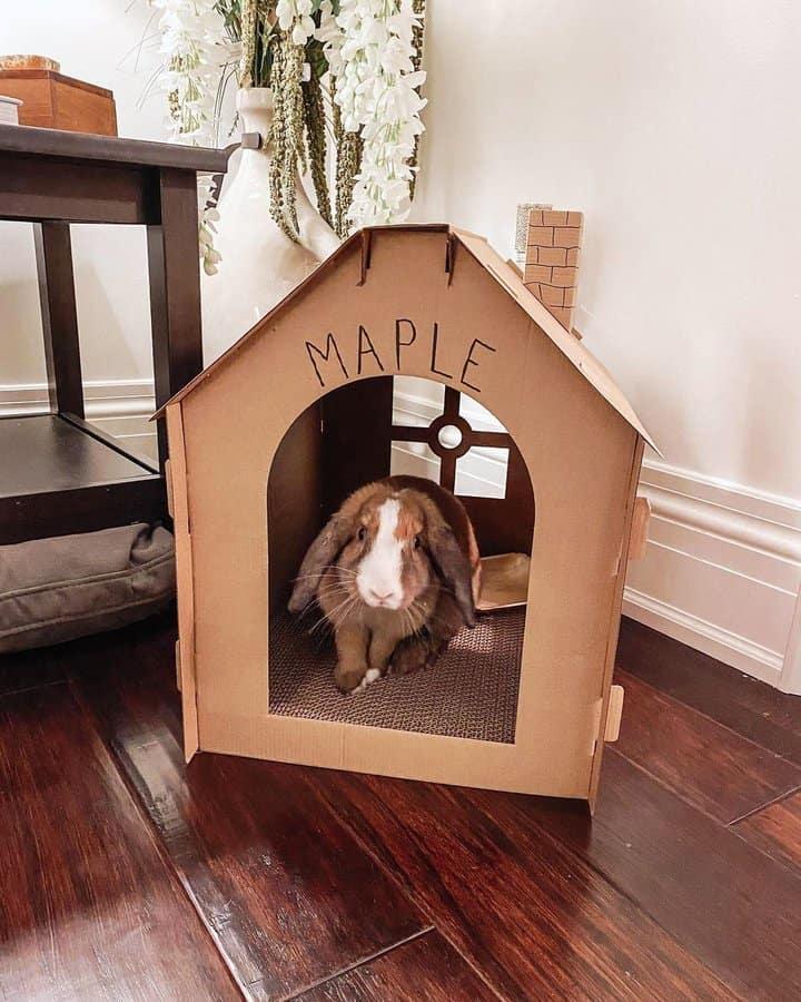 casa de conejo de cartón de bricolaje
